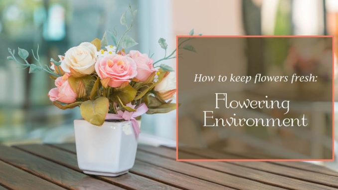 The Definitive Guide on How to Keep Flowers Fresh