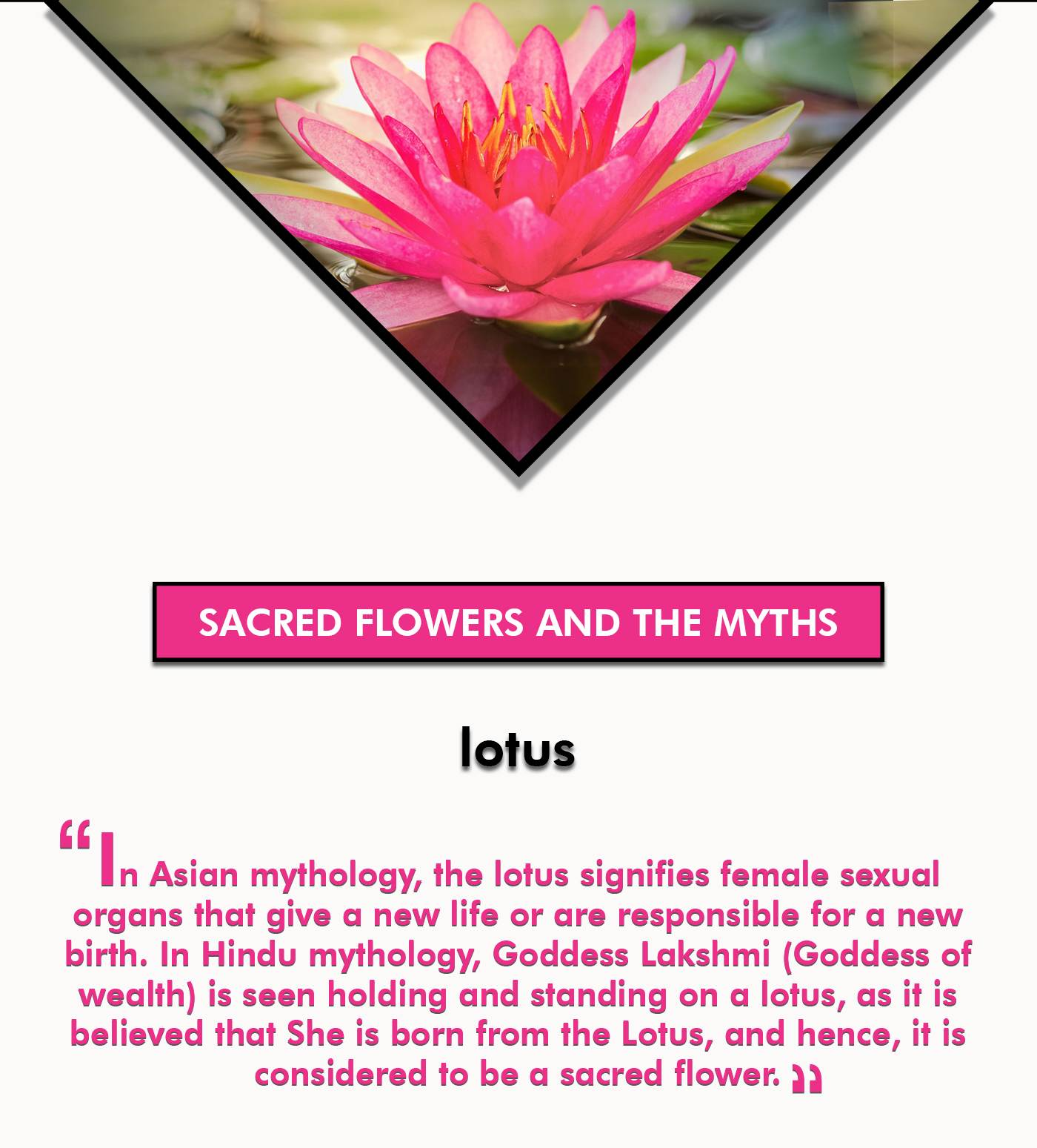 Sacred Flowers And Myths Related To Them