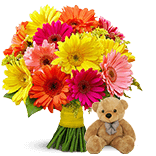 Flowers & Teddy Delivery in India
