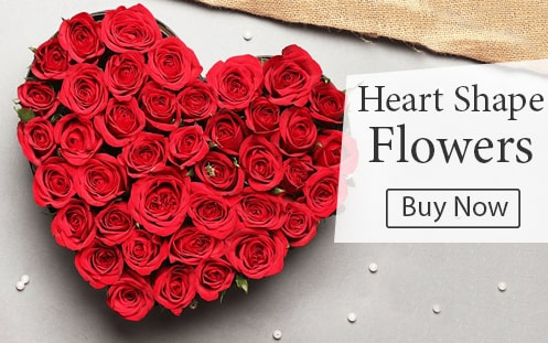 Heart Shape Flower Delivery India