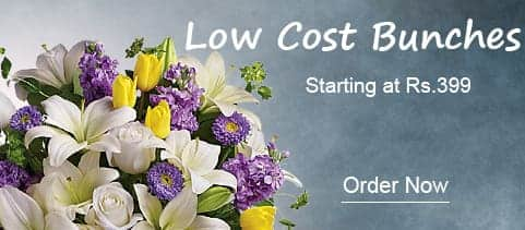 Low Cost Bunches India