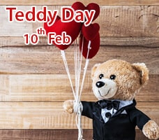 Valentine Teddy India