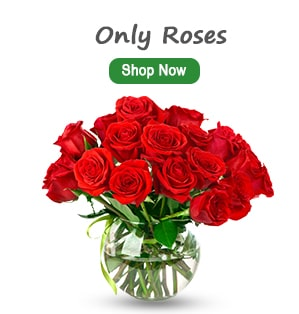 Only Roses Delivery India