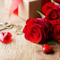 Rose Day Flowers India