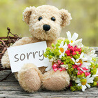 I am Sorry Flowers India