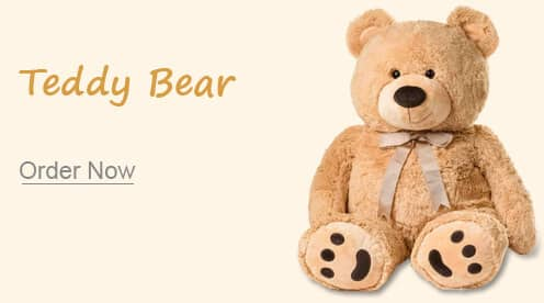 Teddy bear India