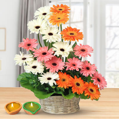 20 Colourful Gerberas